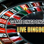 DingDong Casino Review